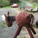 Horse - Erin Imes