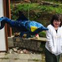 Talia Petosa and the Porpoise