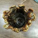 Carved Vase top - Kendra Arnold
