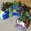 Fish Pot 1- Zoee Wilson