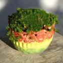 Flower Pot 4 - Stacie Lanners