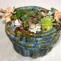Pot  with flowers - Kendra Arnold