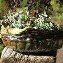 Flower Pot - Erin Imes