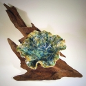 Leaf Bowl on Driftwood 3- Kendra Arnold