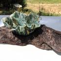 Leaf Bowl on Driftwood Bark  1 - Kendra Arnold