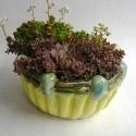 Flower Pot - Zoee Wilson