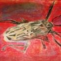 Bug - Stacie Lanners - Pastel