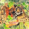 Tiger Eyes - Leo Black - Colored Pencil