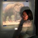 Talia Petosa projecting Elephant