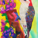 Woodpecker - Talia Petosa - Oil Pastel