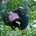 Ebey upside down
